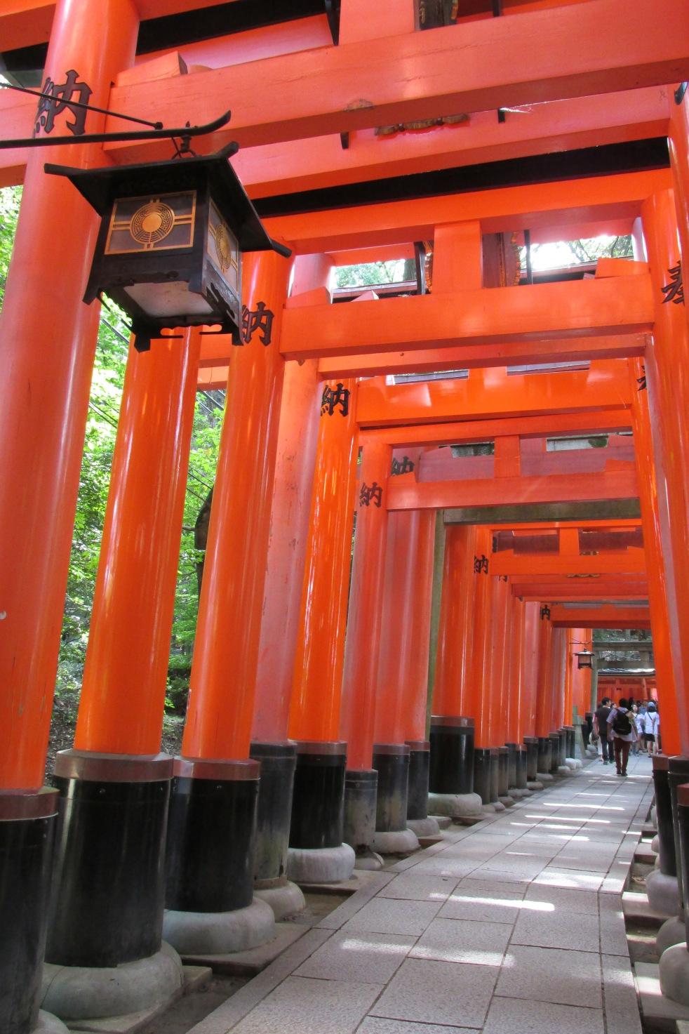 Vermillion torii gates reminded me of Kaoru Kamiya